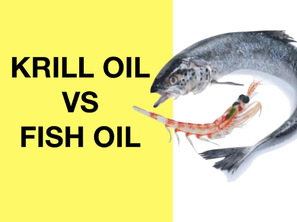 Dr jose guevara atlanta chiropractor personal injury for Krill oil versus fish oil